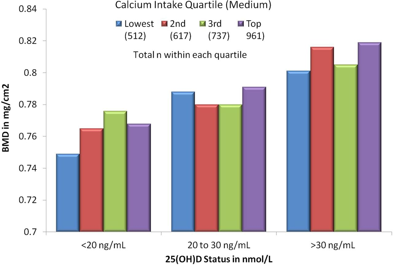 Total Calcium Per Day For Large Dogs