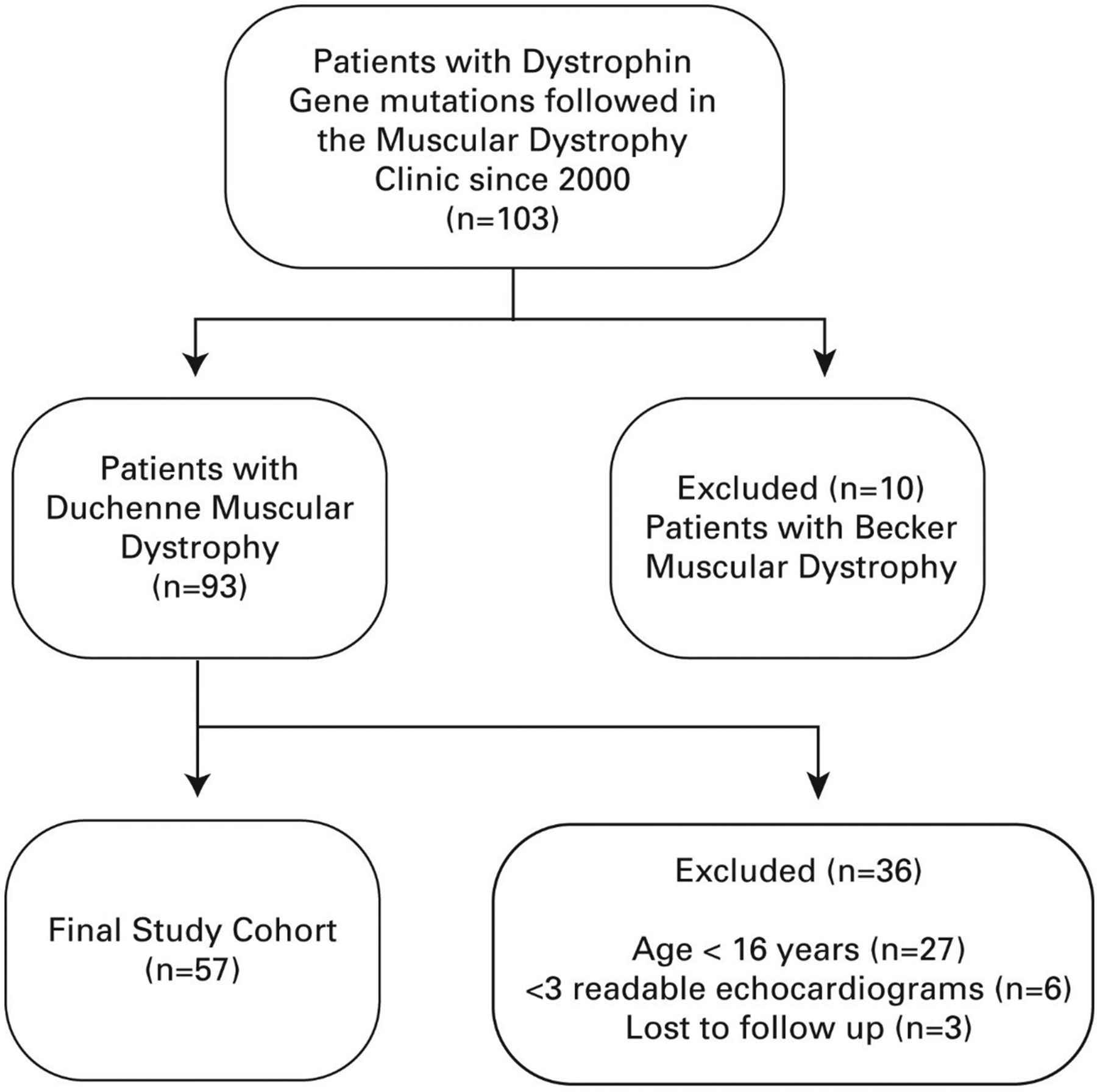 Progressive left ventricular dysfunction and long-term