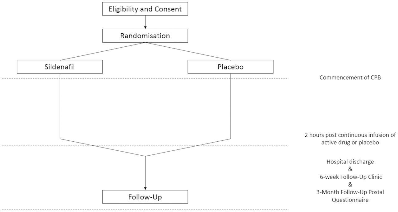 Effect Of Sildenafil Revatio On Postcardiac Surgery Acute Kidney Envelope Detector One Circuit A Week Download Figure